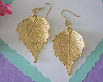Gold Leaf Earrings, Birch Leaf , Real Leaf Earrings, Real Gold Birch Leaf, Gold, Nature, LEP55