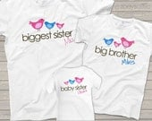 Matching Sibling Shirts-big middle little sisters (or brothers)  Pecking order t-shirts
