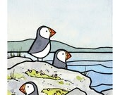 Puffins Watercolor Illustration Print
