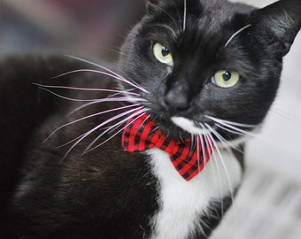 Red and Black Plaid Bow Tie - Gingham Cat Bow - Dog Bowtie - Self Tie - Ladies Hair Accessory