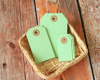 Light Spring GREEN Reinforced Luggage Tag