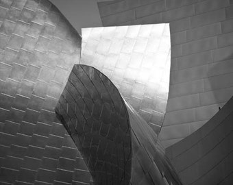 Disney Concert Hall, Los Angeles Print, Silver, Modern, Abstract, Architecture, Black White Photos, Frank Gehry