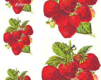 Strawberry Water Slide Decals 8 x 10 inches Home Decor, Kitchen Decor, Furniture, Wall Transfer Images 2 Large, 3 small