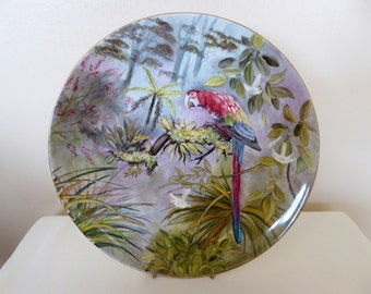 hand painted plate, parrot plate, bone china plate, decorative plate