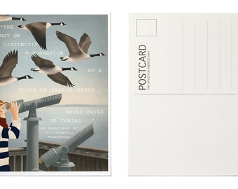 Illustrated Postcards, Postcard Set, Canada Goose Art, Animal Holiday Cards, Christmas Card Set