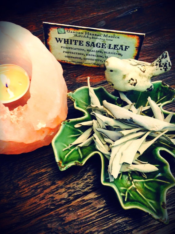 WHITE SAGE Dried, Loose Herb, California Sage, Spiritual Herb, Witches Apothecary, Garden Herbal Magick, Witchcraft, Hoodoo
