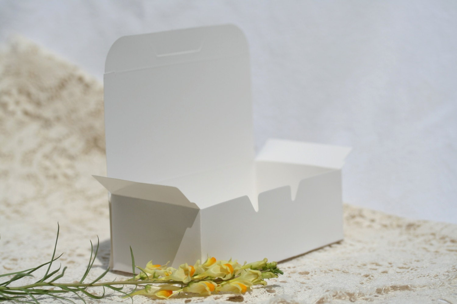 36 Cake Boxes Favor Boxes 5 5 by 1 75 Inches Wedding Cake Box