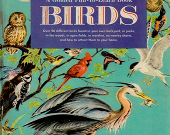 Birds (A Golden Fun to Learn Book) by Clara Hussong, illustrated by Marjorie Hartwell
