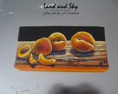 Original 2x4 Apricot Refrigerator Magnet Painting on Canvas by J. Mandrick