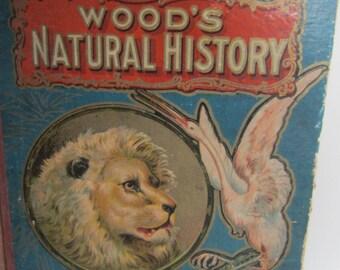 Wood's Natural History***  by J .G. Wood