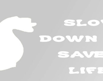 Slow Down & Save A Life Squirrel Decal
