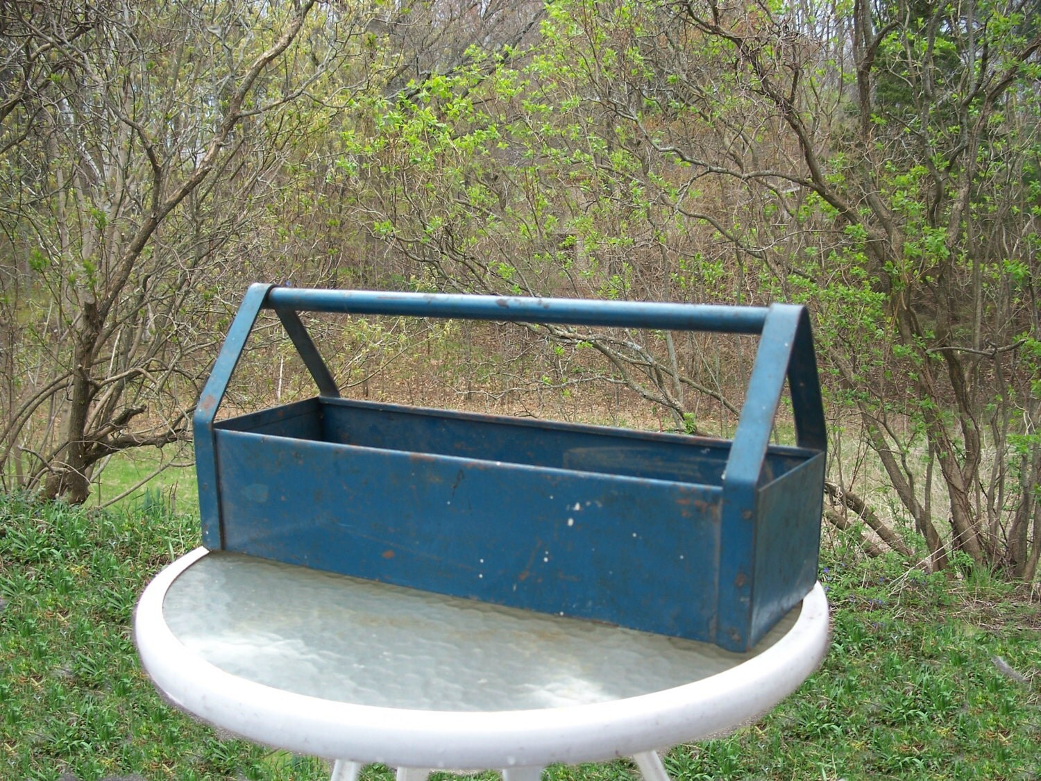 Vintage rustic rusty blue metal tote tool carrier box caddy for Small garden tool carrier