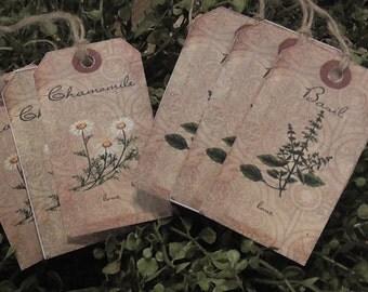 Herbs Basil & Chamomile Hang Tags