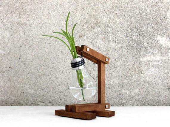 Zeta getrocknet upcycled bulb vase recycelt glühbirne von paladim