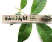 Pyrite Gemstone Magnets Gift Set // Shine Bright