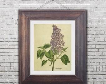 printable botanical flower, botanical print, digital botanical print, botanical illustration,botanical artwork, lilac print 8 x 10,YOU PRINT