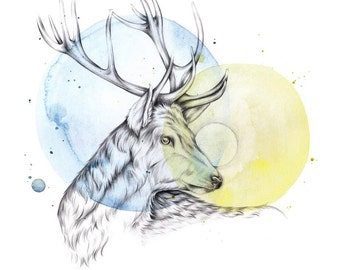 Stag Giclee Print