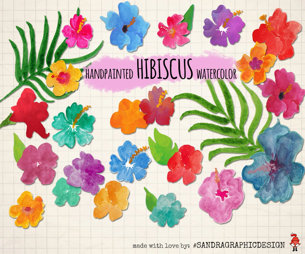 Summer clipart hibiscus flowers hand painted with watercolor 28 summer clipart hibiscus flowers hand painted with watercolor 28 png files with colorful tropical flowers 888 izmirmasajfo