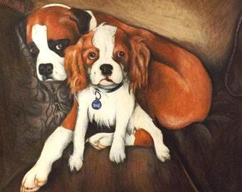Custom Dog Portrait- Colored Pencil