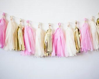 Princess Party Decor, Princess Party Theme, Princess Party Garland, Princess Party Tassel Garland, Pink Garland, Pink Tassel Garland(15)