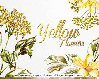 Picture files with transparent backgrounds flowers - ra one songs images of roses