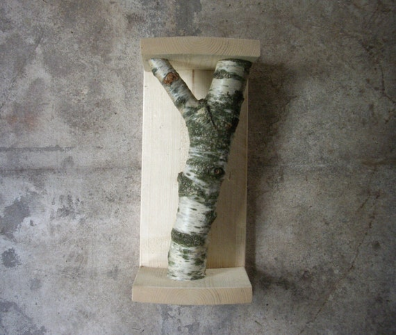 katzen kratzbaum mit echten baumstamm unwiderstehlich. Black Bedroom Furniture Sets. Home Design Ideas