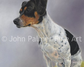 Custom pet portraits, custom animal portraits, custom dog portraits, custom cat portraits