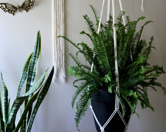 "Macrame Plant Hanger - 60"" Simple - Natural White Cotton Rope - Modern Indoor Hanging Planter - MADE TO ORDER"