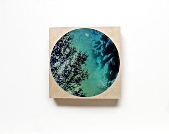 Wood wall art - tree art print - moon - blue wall art - nature photography - photography on wood - moon art print - colorful photography