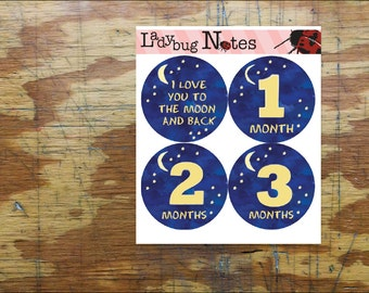 To the Moon and Back Onesie Stickers. Baby Month Stickers. Monthly Photo Accessory Stickers. Easy Peel Baby Stickers.