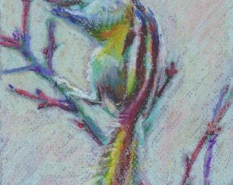 """Original Pastel drawing """"Chipmunk"""""""