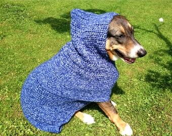 Dude, Dog Sweater, dog sweaters, dog hoodie, small dog sweater, small dog sweaters, large dog sweater, blue dog sweater, dog goodies,