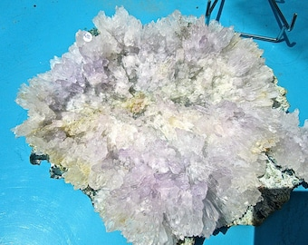 FLOWER of AMETHYST, collectible +++ RARE