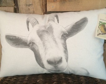 Goat Pillow
