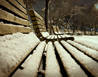 Cold Seat, Bench, Park, Snow, Christmas, Toledo, Ohio, International Park, Winter, Path, Sidewalk