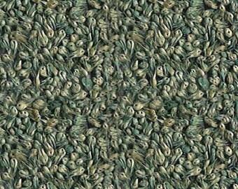 "Buffalo Grass ""Texoka"" Seed"