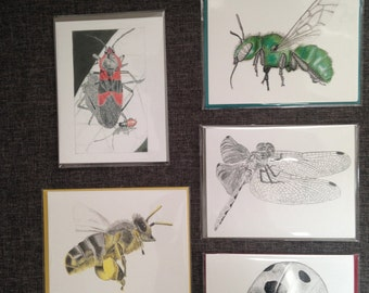 Insect art greeting card pack