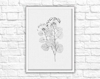 Black & White Nature Sketch Print - Instant Download - Printable Wall Art Decor