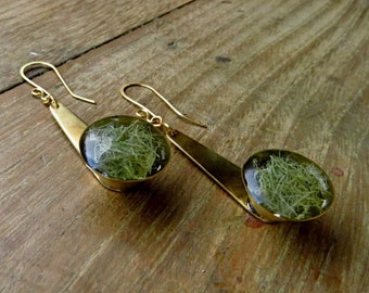 Earrings in brass with lichen resinated wine