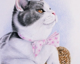 Original Colored pencil Cat Portrait, Drawing of a Cat in a Basket, British Shorthair Cat