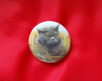 "Poker Cat 1"" Pin"