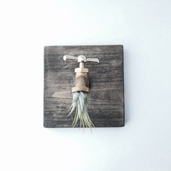 Items Similar To Industrial Air Plant Wall Decor Living