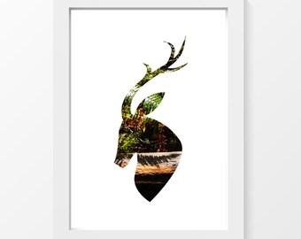 "Fern deer / Deer fern forest shadow trunk green brun printable art home decor downloadable art photo to print yourself / A4 and 8.5"" x 11"""