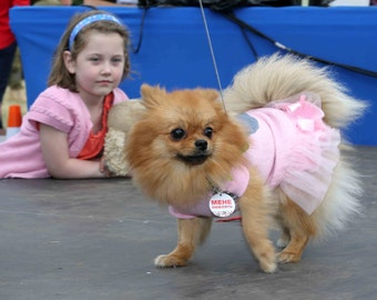 Pink dog dress with grey heart pattern Custom made dress Pet apparel Yorkshire fashion Birthday dress Small dog clothes XXXS XXS XS S dog