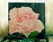 Pink rose for the queen. 100% Original. Oil painting