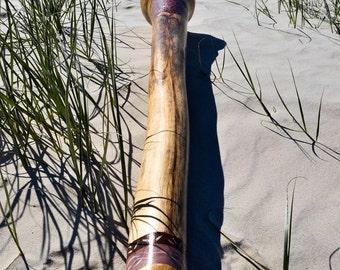 Didgeridoo Agave D