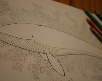 Colouring sheet - whale - download