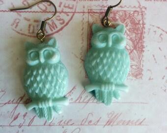 The Turqoiuse Owl
