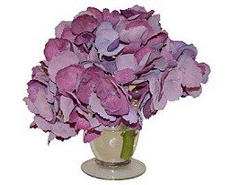 Purple Hydrangea in a Glass Vase