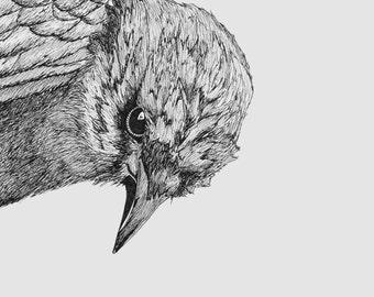 The Crow (Print)
